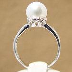 南洋真珠のリングが卸価格